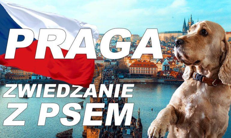 Praga blog podróżniczy